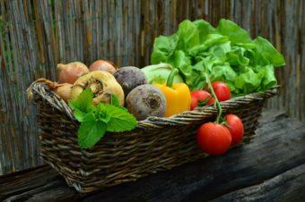 Wiosna w warzywniku – dlaczego warto zrobić plan?